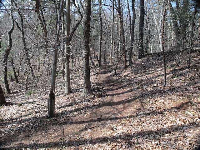 A little Willowdale single track